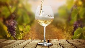 Vin rouge de Provence des Vignerons du Plan de la Tour