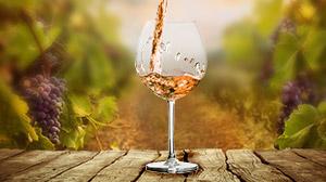 Vin rosé de Provence des Vignerons du Plan de la Tour